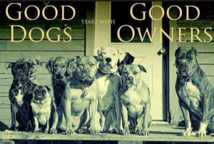 Good Dogs