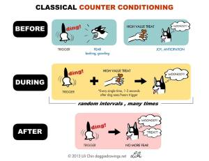 classical counter conditioning