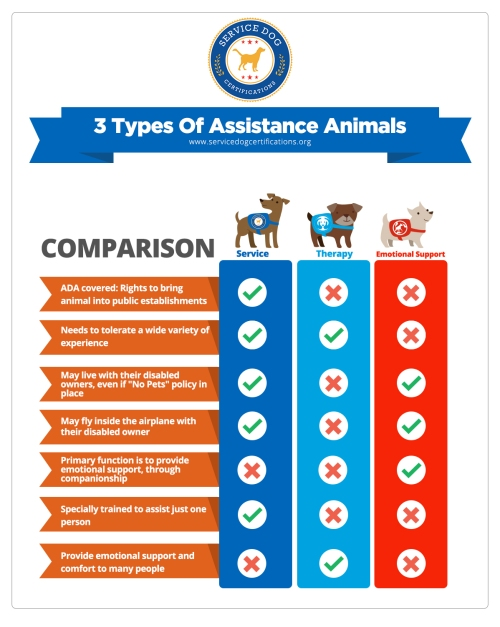 servicedog_ESA_therapydog